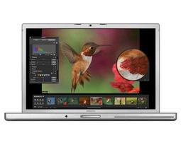 Ноутбук Apple MacBook Pro 15 Early 2008 MB513