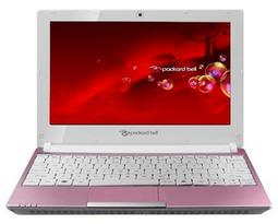 Ноутбук Packard Bell dot se DOTS-E-513RU