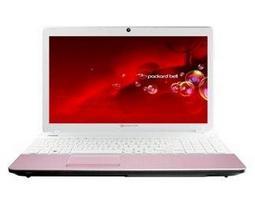 Ноутбук Packard Bell EasyNote TS45 AMD