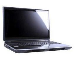Ноутбук Eurocom Leopard 2.0
